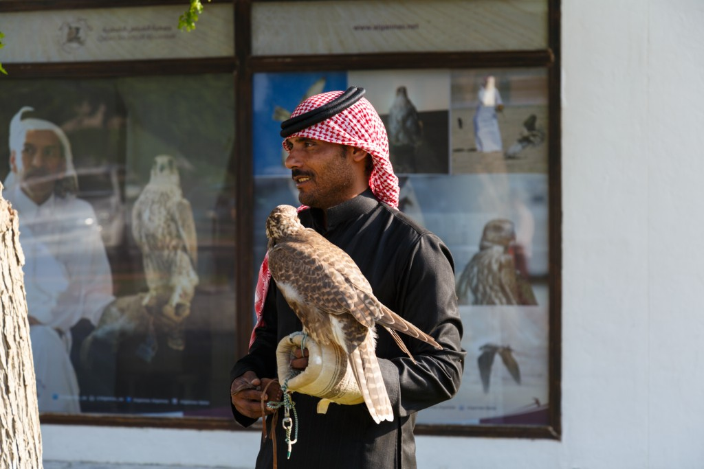 Qatar Airways Doha City Tour Katara Cultural Village
